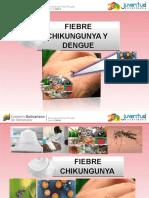 1 Fiebre Chinkungunya y Dengue Mpps Nov 2014
