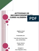 Actividad de Reconocimiento Del Curso Algebra Lineal