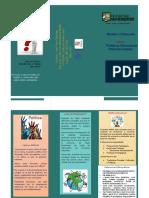 Folleto - Politicas Educativas Internacionales