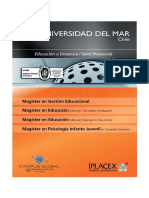 modulos magister udm.pdf