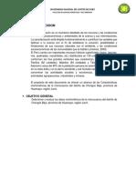 Informe Chongos Bajo -Copon Cuencas