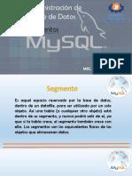 3.2_Segmentos