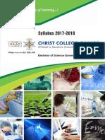 BSc V-VI Syllabus 2017-18 by Christ College - Rajkot