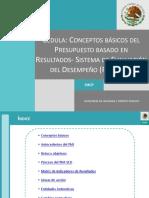090811CeduladelPbR-SED.pdf