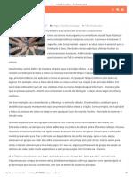 Princípio Ou Cultura_ – Revista Adventista