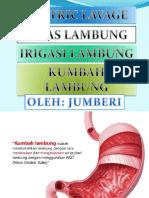 KUMBAH LAMBUNG