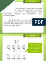 Alfa-Glukosidase Inhibitor