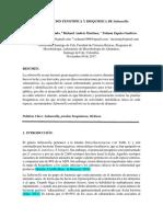Informe 4. Determinacion Fenotipica y Bioquimica de Salmonella. . (1)