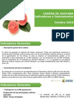 002 - Cifras Sectoriales - 2016 Octubre Guayaba