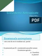 0_ecosisteme_antropizate.pptx