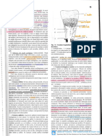 Anatomia Omului Papilian Vol I