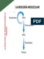 Dogma de Biologia Molecular