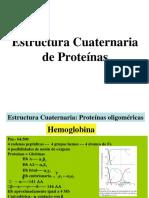 4.- Estructura Cuaternaria