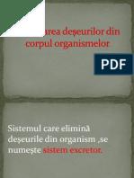 biologie cl.6