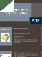 resumen-lipidosylipoproteinas-160616032053