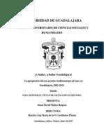 Apropiación del son jarocho tradicional por los jóvenes tapatíos, 2002-2015