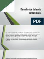 Remediación Del Suelo Contaminado-modificada