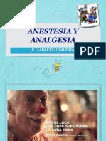 Anestesia y Analgesia 1