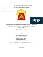 Proyecto Olivera Avance