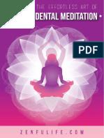 Master the Art of Transcedental Meditation