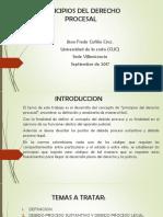 Ppios de Derecho Procesal (1)