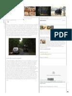 Wilderness Tales From Odisha_ Kashmir of Orissa(Odisha)- Daringbadi