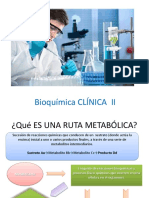 Rutas Metabolicas Clase 01
