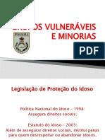 GRUPOS VULNERÁVEIS E MINORIAS - IDOSOS