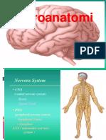 LO neuro