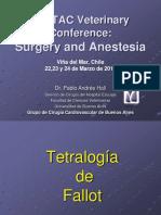 Tetralogía de Fallot.pdf