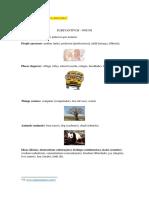 Apostila de Língua Inglesa - Substantivos