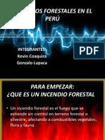Incendios Forestales en El Perú