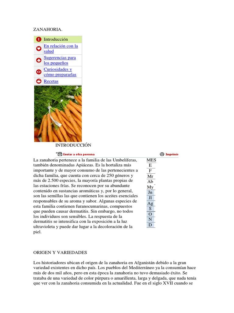 Zanahoria Plantas Alimentos En cocina con sabor preparamos una deliciosa torta de zanahoria con elvis suárez. zanahoria plantas alimentos