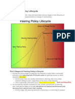 Peering Policy Lifecycle 2.pdf