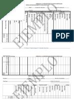 Perfil de Funcionamiento Psicologico Nro 1-Anee