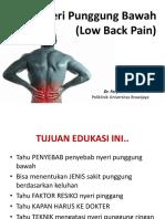 Nyeri Punggung Bawah by Dr.fery