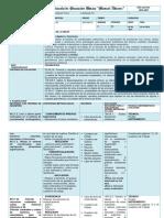 MATE PLAN DE DESTREZAS listo (1).docx