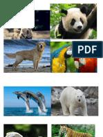 Actividad Imagenes Para Imprimir 2