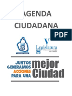 Agenda Ciudadana 2010 2012