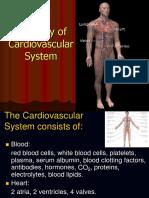 Anatomy of Cardiovascular System Puji