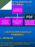 exercitii_pentru_dezv.auzului_fonematic_aurelia_nica.pps