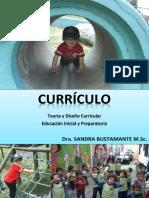 curriculosbc.pdf