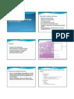 04 Endometrial Pathology