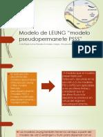"Modelo de LEUNG ""modelo pseudopermanete PSSS"""
