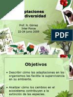 Adaptaciones-Gomez.pdf