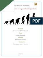 Primer Trabajo de Evolucion