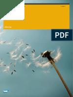 SAP documentação Esocial.en.pt.pdf