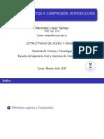AYM 8 Miembros sujetos a compresión II (1).pdf