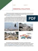 Environmental Pollution( )