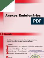 anexosembrionriospowerpoint-091129151714-phpapp01.pdf